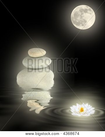 Zen Schönheit