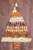 image of pecan tree  - Set of different varieties of nuts in the form of a tree - JPG
