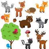 Vector Set of Cute Woodland and Forest Animals