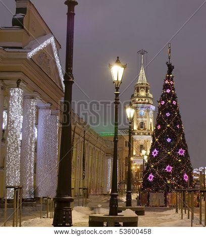 Christmas Tree, St. Petersburg