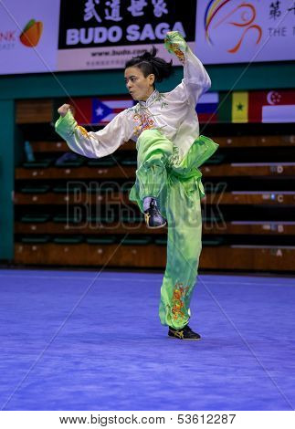 KUALA LUMPUR - NOV 03: Lee Yang of Malaysia performs his fighting style in the 'taiji quan' event at the 12th World Wushu Championship on November 03, 2013 in Kuala Lumpur, Malaysia.