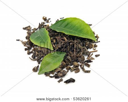 Green Tea With Leaf