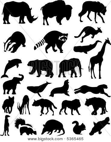 Animal Silhouettes Set No.1. Wild Mammals