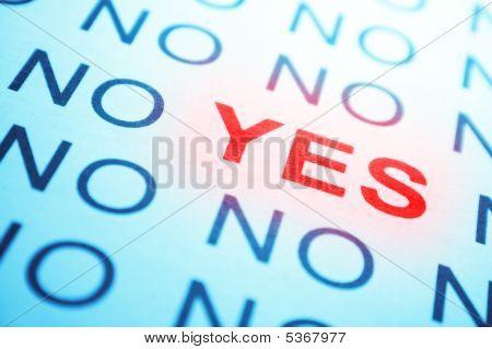 No y sí texto