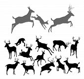 stock photo of deer horn  - Deer silhouettes including fawn doe bucks and stags in various poses - JPG