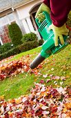 foto of leaf-blower  - Vertical photo of electrical blower gloved hands holding cleaning leaves from front yard with house in background - JPG