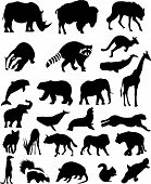 picture of platypus  - Animal Silhouettes Set Wild Mammals Vector illustrations - JPG