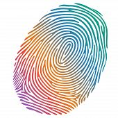 stock photo of fingerprint  - Vector isolated many - JPG