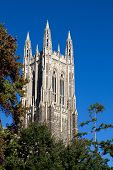 stock photo of dukes  - Duke University chapel bell tower located on the campus of Duke University in Durham North Carolina - JPG
