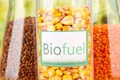 stock photo of ethanol  - Conceptual photo of bio fuel - JPG
