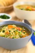stock photo of scallion  - Vegetarian quinoa soup with carrot potato celery pumpkin leek and tomato sprinkled with parsley and scallion 