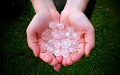 image of freezing temperatures  - Big hail in hands in middle summer - JPG