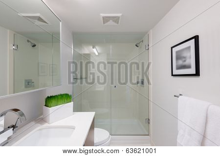 Interior design of a spacious and elegant bathroom