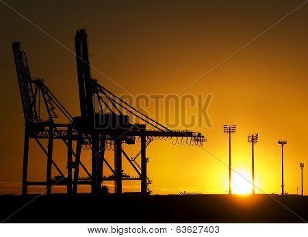 Monster Cranes At Sunrise