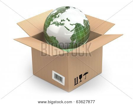 Earth in cardboard box on white isolated background. 3d