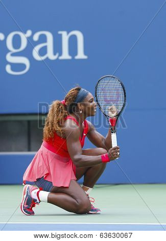 Grand Slam champion Serena Williams during fourth round match at US Open 2013