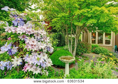 Home Garden With Antique Fountain