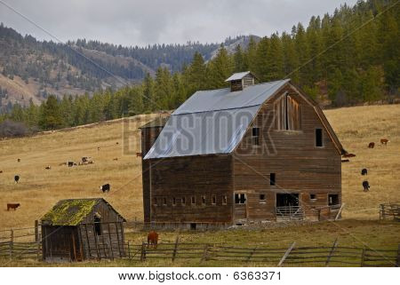 country barn 2