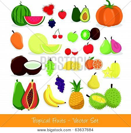 Tropical Fruit Vector Set