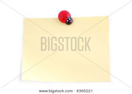Ladybird On A Sheet