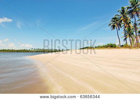 An idyllic sunny beach with bright brown sand