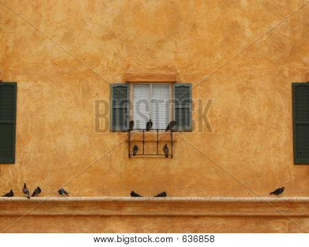 Birds On A Windowsill-Landscape Style