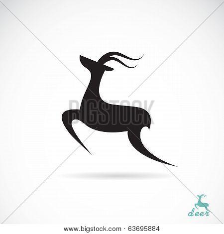 Vector Image Of Deer Design
