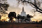 pic of buddhist  - Ancient Buddhist Mirisavatiya Dagoba Stupa in Anuradhapura - JPG