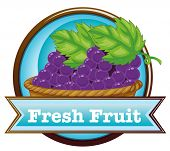Illustration of a fresh fruit label with a basket of grapes on a white background