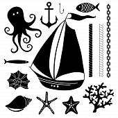 image of shell-fishes  - Silhouette Sea  - JPG