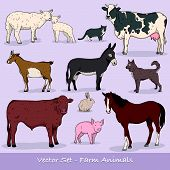 stock photo of guinea  - The Farm Animals Vector Set creative collection - JPG