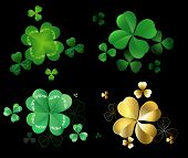 pic of four leaf clover  - Set of green and gold leaves clover with three and four leaves on a black background  - JPG