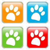 foto of webbed feet white  - Paw buttons set on white background  - JPG