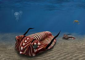 picture of paleozoic  - Prehistoric trilobite scavenging on the ocean floor - JPG