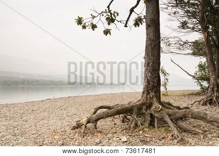 Misty Coniston Water