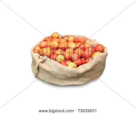 Tomato Packing Sacks