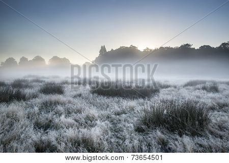 Beautiful Autumn Fall Foggy Dawn Landscape Over Frost Covered Field And Forest