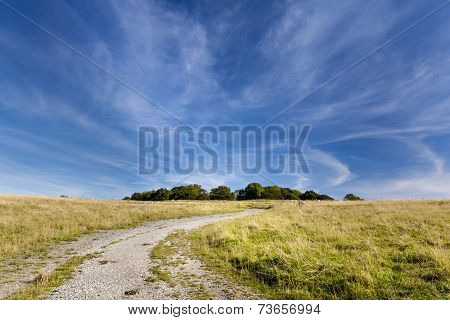 Track Leading To Badbury Rings Iron Age Fort