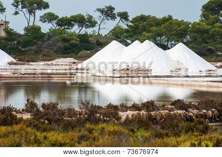 Salines In Mallorca