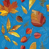 picture of willow  - Vector seamless pattern with autumn set leaves nuts tree - JPG