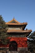 picture of zedong  - Chinese pavilion under clear blue sky in winter time - JPG