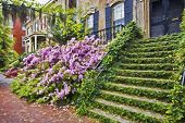 stock photo of impressionist  - Impressionist art of the historic district of Savannah Georgia in early spring with the Azaleas in bloom - JPG
