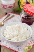 image of curd  - Homemade Cottage Cheese  - JPG