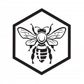 foto of honeycomb  - monochrome design with bee and of honeycomb - JPG