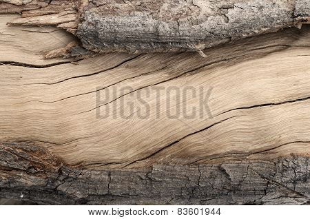 Frame Of Cracked Wood Texture For Background