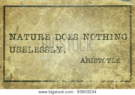 Nature Aristotle