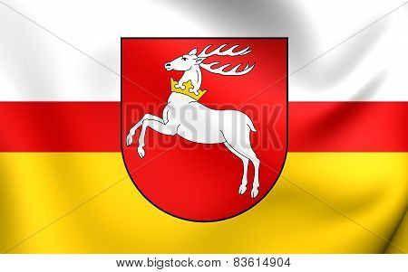 Flag Of Lublin Voivodeship, Poland.