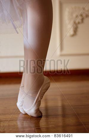 Close-up Ballet Girls Legs