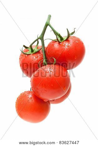 Fresh Ripe Tomatoes In Drops Of Water Close-up On A White Background