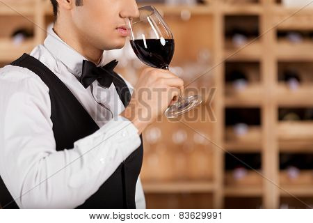 Smelling A Good Wine.
